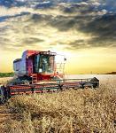 subventie, agricultura, Guvern, Ministerului Agriculturii si Dezvoltarii