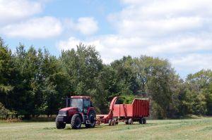subventie, Agentia de Plati si Interventie pentru Agricultura, agricultura