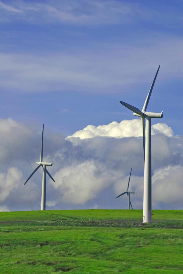 parc eolian, turbine