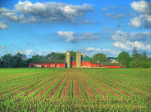 Fermierul, agricultori, cofinantare