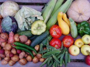 subventie, Directie Agricole si pentru Dezvoltare Rurala (DADR), agricultura ecologica, Ministerul Agriculturii si Dezvoltarii Rurale