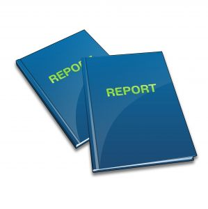 raport, guvernare, bani