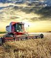 Primul Siloz, agricultura, program, garantie, credite, certificate