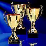 Romanian PR Award, ONG-uri, societate civila, proiecte, competitie