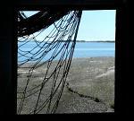sate, pescuit, fonduri europene, ONG, proiect ecologic, Mare Nostrum
