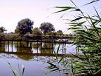 Delta Dunarii, deseuri, masterplan, finantare nerambursabila, proiect