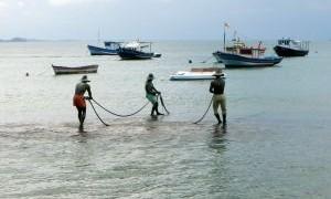 Raport CCE: Eficacitatea sprijinului acordat pentru acvacultura prin Fondul european pentru pescuit