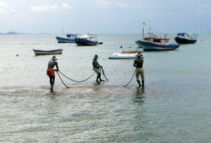 Se depun cererile de finantare pentru Masura IV.4 – Prelucrarea produselor pescaresti si de acvacultura