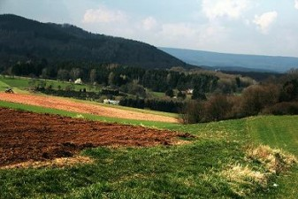 Contracte de peste 5 miliarde de euro pentru cresterea productivitatii agricole si imbunatatirea conditiilor de viata din mediul rural