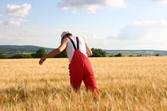 Biochem Creditare IFN va acorda credite fermierilor