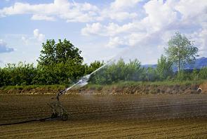 PNDR 2014-2020 – 4.3: Investitii pentru dezvoltarea, modernizarea sau adaptarea infrastructurii agricole si silvice