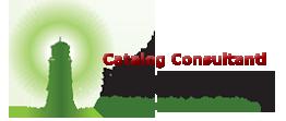 Catalog Consultanti – Versiunea 3