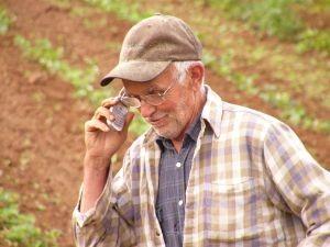 Majoritatea beneficiarilor de subventii in agricultura au peste 60 de ani