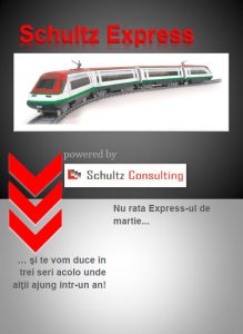 Schultz Express
