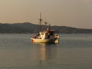 A fost publicata a doua versiune oficiala a Programului pentru Pescuit si Afaceri Maritime 2014-2020