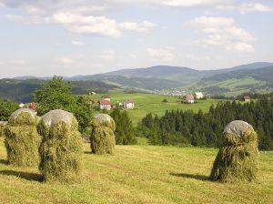 Cum se schimba clasificarea fermelor si exploatatiilor agricole din Romania