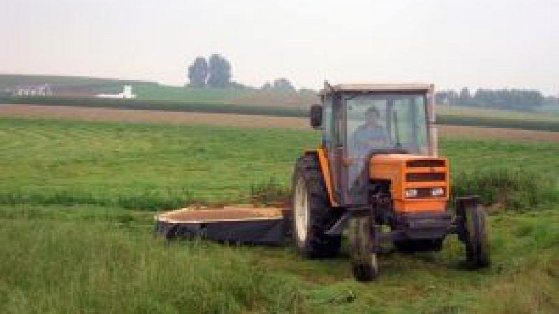 Daea: APIA a demarat la miezul noptii plata avansului pe suprafata; peste 42 de milioane de euro au plecat catre 24.464 fermieri