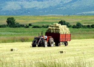 Ce fel de masini agricole pot fi achizitionate cu fonduri europene