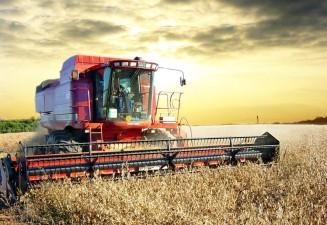 Cati fermieri au cerut in Bucuresti subventii pe terenuri agricole