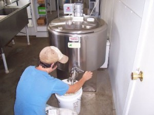 Se relanseaza ajutoarele de minimis pentru micii fermieri care vor sa cumpere instalatii pentru racirea laptelui
