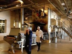 Consortiu danez cauta parteneri pentru dezvoltarea unor proiecte de biomasa
