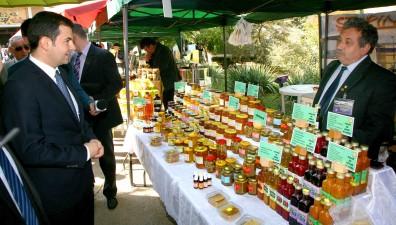 Daniel Constantin: Am elaborat un proiect privind acordarea unui ajutor financiar care sa compenseze pierderile din acest an pe sectorul apicol