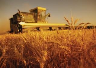 Plati pentru compensarea pierderilor in valoare de 28 de milioane de lei pentru agricultori