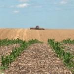 exploatatii-agricole
