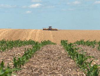 exploatatii-agricole.jpg
