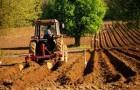 Subventiile, sprijinul financiar principal in randul fermierilor din Romania