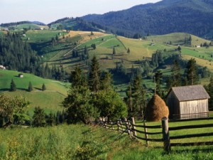 PNDR Masura 7 –  Servicii de baza si reinnoirea satelor in zonele rurale 2014-2020