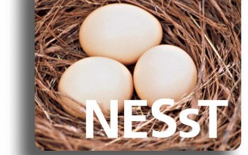 Competitia NESsT pentru intreprinderi sociale, editia 2015