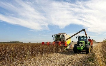Agricultura, singurul sector unde s-au luat cele mai multe credite