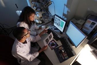 Grant de cercetare stiintifica in domeniul chirurgiei tumorilor maligne cutanate