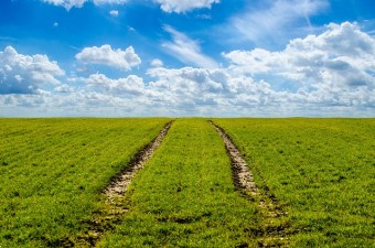 Sorin Grindeanu: Tinta finantarilor agricole pentru 2017 este de 3,5 miliarde de euro