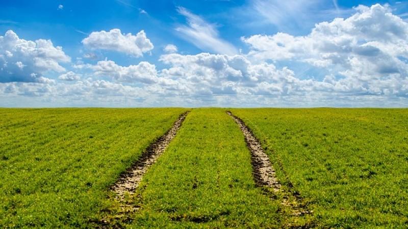 PNDR: Se depun cererile de finantare pentru Submasura 16.4 si Submasura 16.4a  – Sprijin acordat pentru cooperare orizontala si verticala intre actorii din lantul de aprovizionare in sectoarele agricol si pomicol