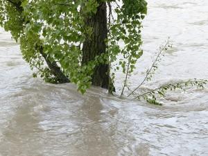 UE va acorda un ajutor financiar pentru populatia afectata de inundatiile din 2014