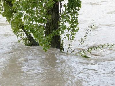 ajutor-inundatii.jpg