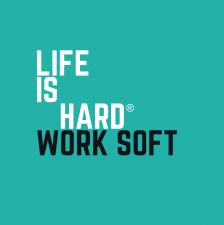 Compania de software Life is Hard doreste listarea pe piata alternativa AeRO