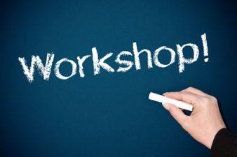 Workshop-ul BVB pentru IT&C