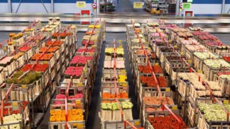 Fonduri nerambursabile disponibile prin PNDR 2020 pentru finantarea investitiilor in procesarea produselor agricole