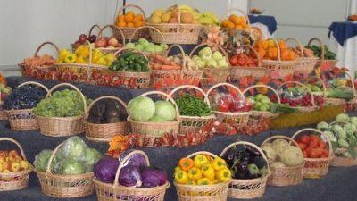 5,5 milioane lei s-au alocat pentru sprijinirea temporara a producatorilor de legume si fructe