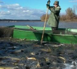 S-a lansat oficial Programul Operational pentru Pescuit si Afaceri Maritime 2014 – 2020