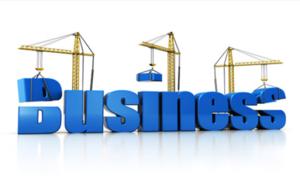Legea privind incubatoarele de afaceri a fost adoptata de Camera Deputatilor