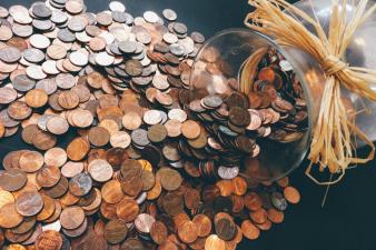 Noi fonduri europene de pana la 200.000 Euro pentru mici afaceri: De la pensiuni si service-uri auto pana la firme de software, in Delta Dunarii. S-a stabilit cand se cer acesti bani