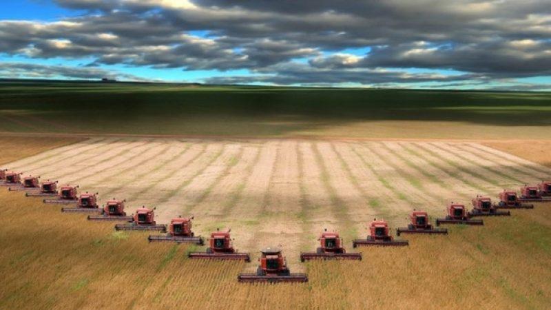 Romania asigura 4% din productia agricola a UE