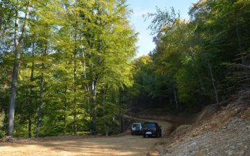 Un drum forestier nou intre Schei si Racadau si alte patru reabilitate, cu fonduri europene la Brasov