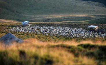 Daea anunta un program pe 10 ani pentru zona montana,din 2018; un miliard de euro din bugetul national