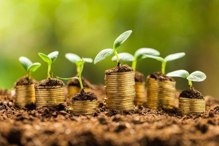 economie_ecologica_bani.jpg