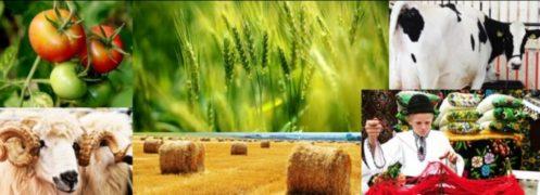 image-2018-03-16-22346532-70-conferina-dezvoltarea-zonelor-rurale-prin-intermediul-pac.jpg